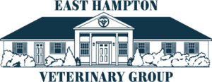 East Hampton Veterinary Group in East Hampton, NY