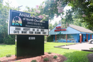 Animal Hospital of N Charleston