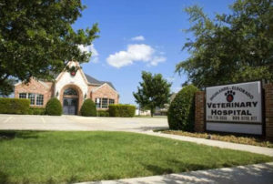 Highlands-Eldorado Veterinary Hospital