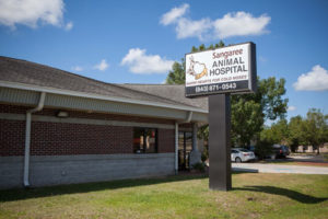 Sangaree Animal Hospital Summerville, SC