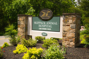 Skippack Animal Hospital