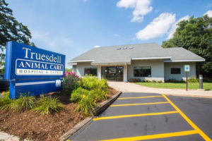 Truesdell Animal Care Hospital