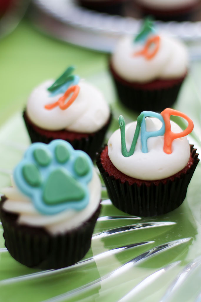 Life at VPP — Our 50th Hospital Party